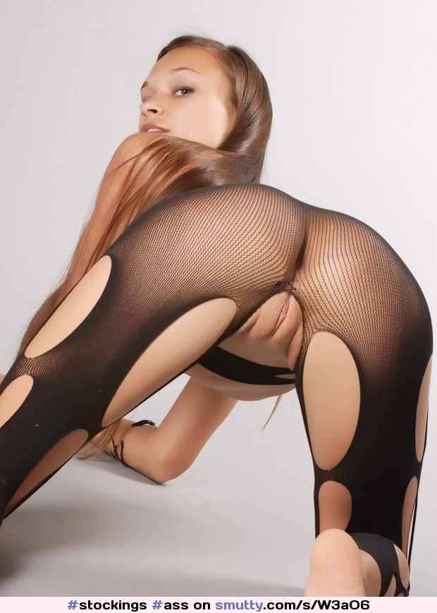 hebe pussy 8ch 8ch hebe pussy porn - Mesh bodystocking porn an image nevermore ass  bodystocking crotchless jpg 620x869