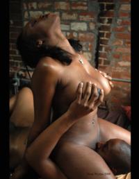 Core free porn soft