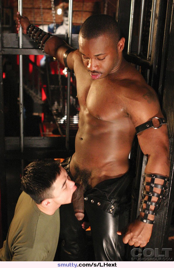Hot Gay Interracial Cocksucker Twink Hung Black  -5997