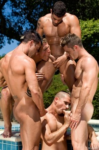 Gays Group Cock Sucking