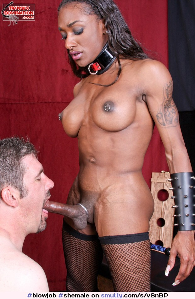 Interracial submission domination