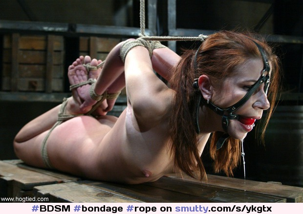 Bondage Sensi Pearl In Hogtied Ancensored 1