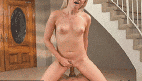Best funny porn gifs
