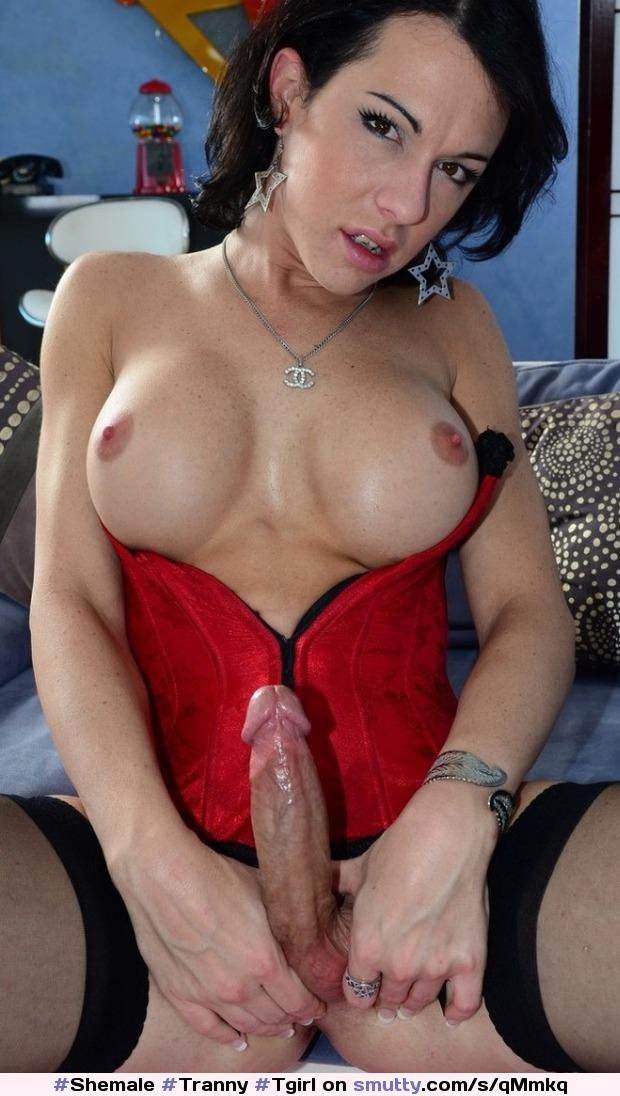 Tons of free wwwdailybasishuge tits hot images