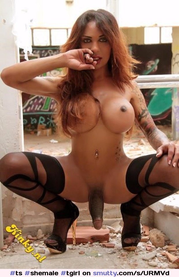 Tranny escort danbury ct search for hookers