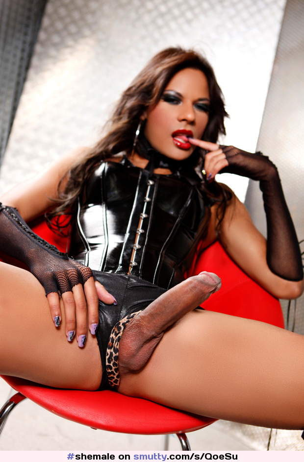Shemale fucked in leather