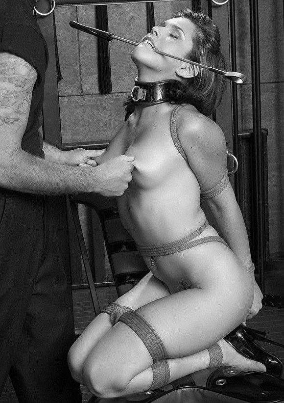 Сексуальная рабыня бдсм — pic 4